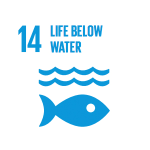 Goal 14: Life Below Water   Careful management of this essential global resource is a key feature of a sustainable future.