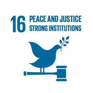 Goal 16: Peace, Justice and Strong Institutions   Access to justice for all, and building effective, accountable institutions at all levels.
