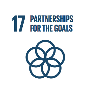 Goal 17: Partnerships for the Goals   Revitalize the global partnership for sustainable development.