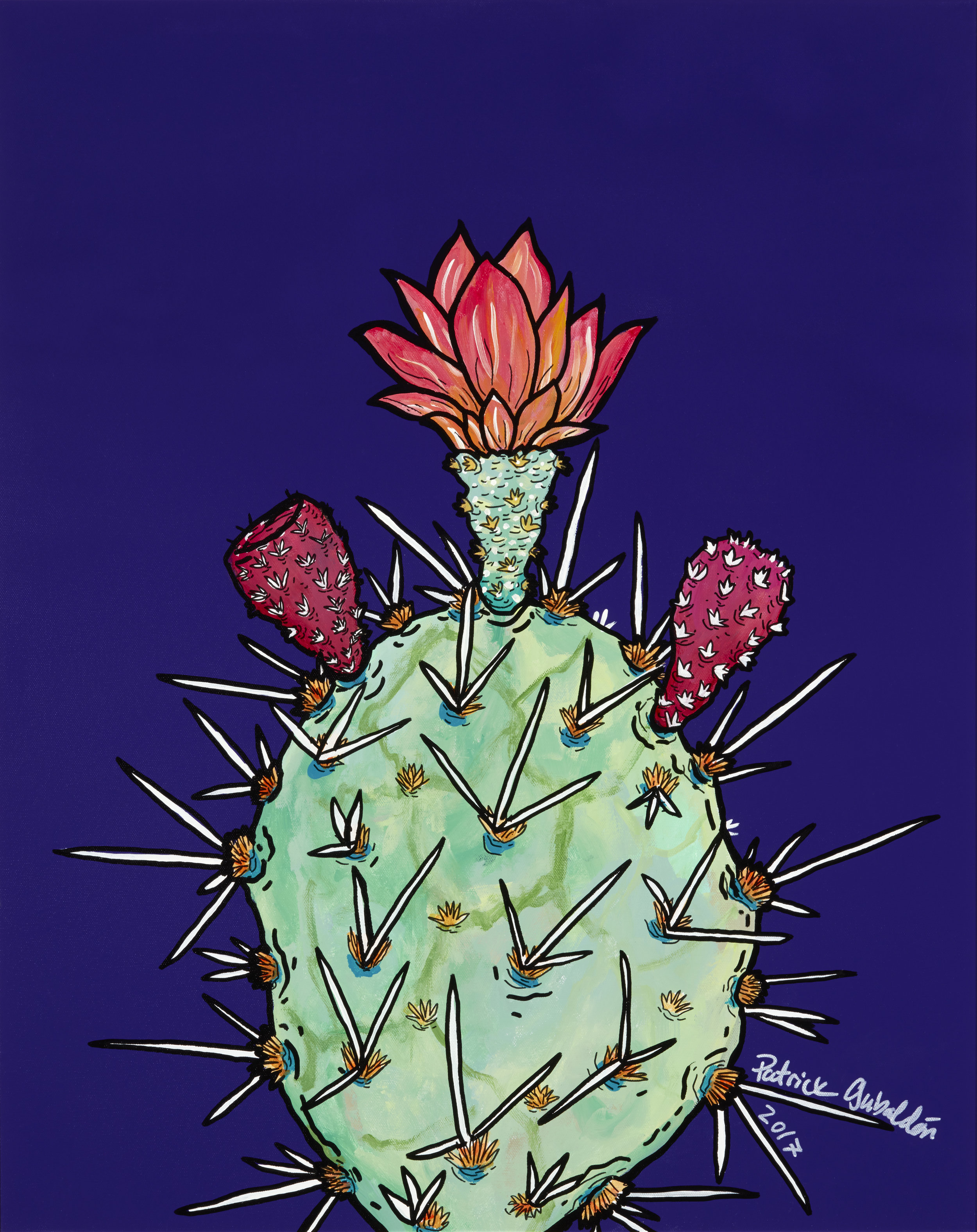 2017 Prickly Pear Series