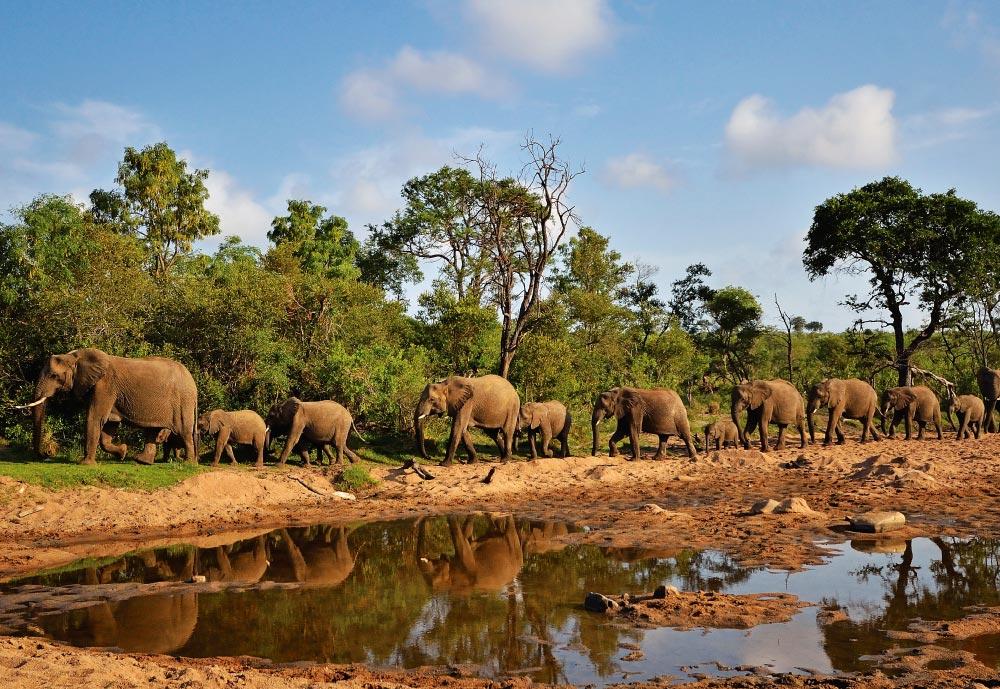 sudafrica-2.jpg