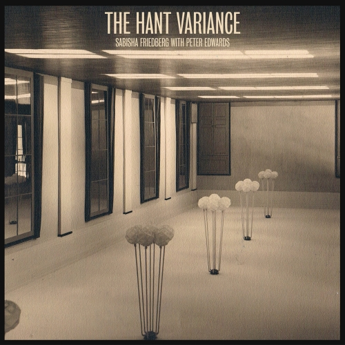 The Hant Variance  vinyl LP cover