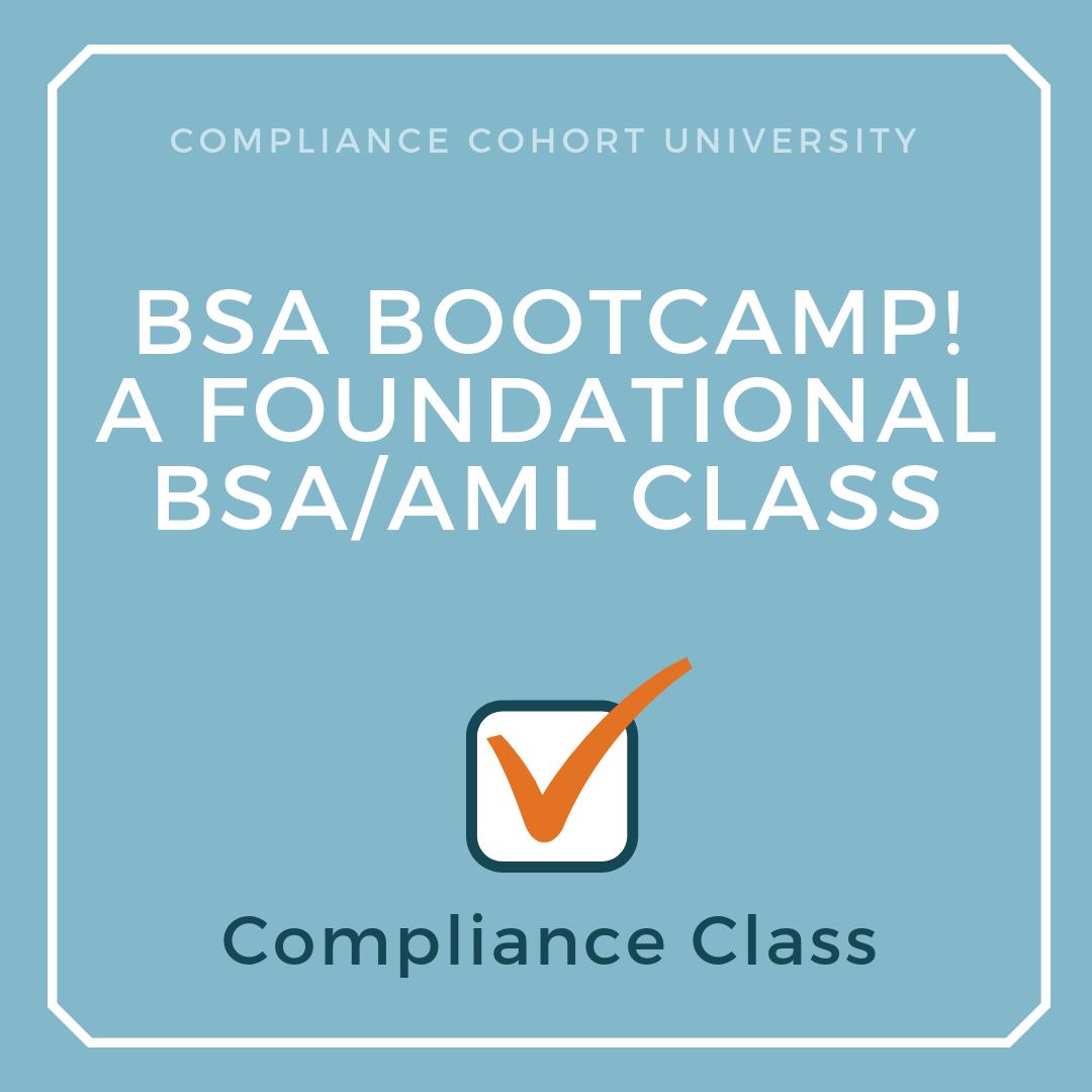 BSA Bootcamp!.png