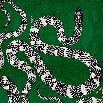 Have been shopping rugs for days for several of our projects...but this one might just be for my house!! 🐍 check out @rug_society #sochic #rugs #interiordesign #klidhome