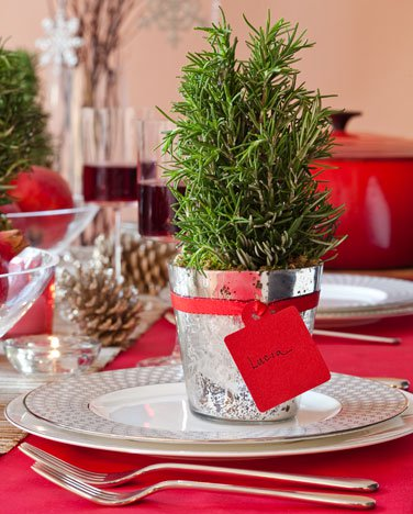 1. Everyone Has Their Place - Place cards make people feel special. Try rosemary plants with guests' names written on tags. Thesedouble as favors guests can take home and then enjoy in their own kitchens.