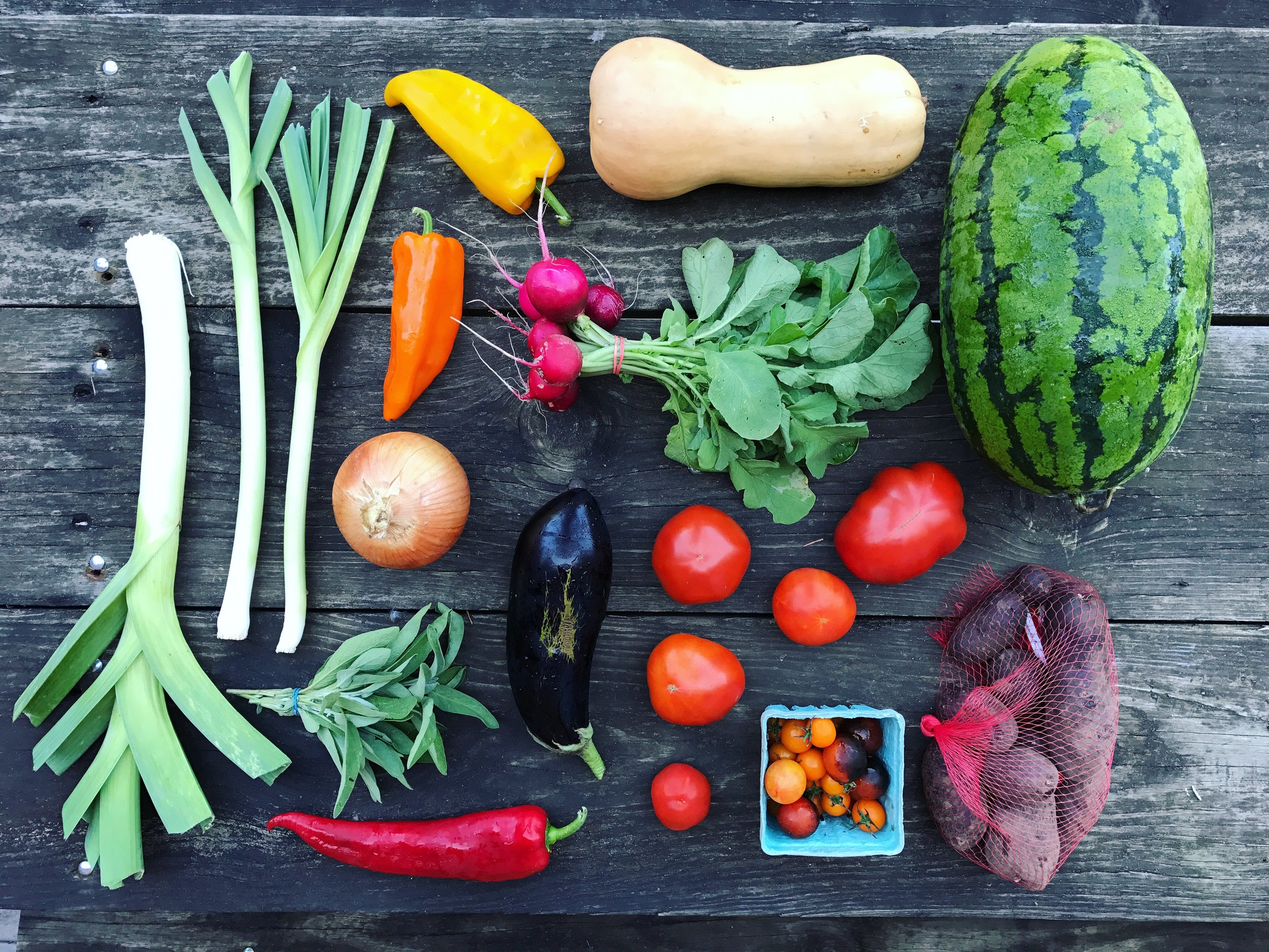 September Large Share // 10-14 items //  Sample box includes: Watermelon, butternut squash, purple potatoes, tomatoes, cherry tomatoes, Italian frying peppers, eggplant, leeks, radishes, onion and sage.