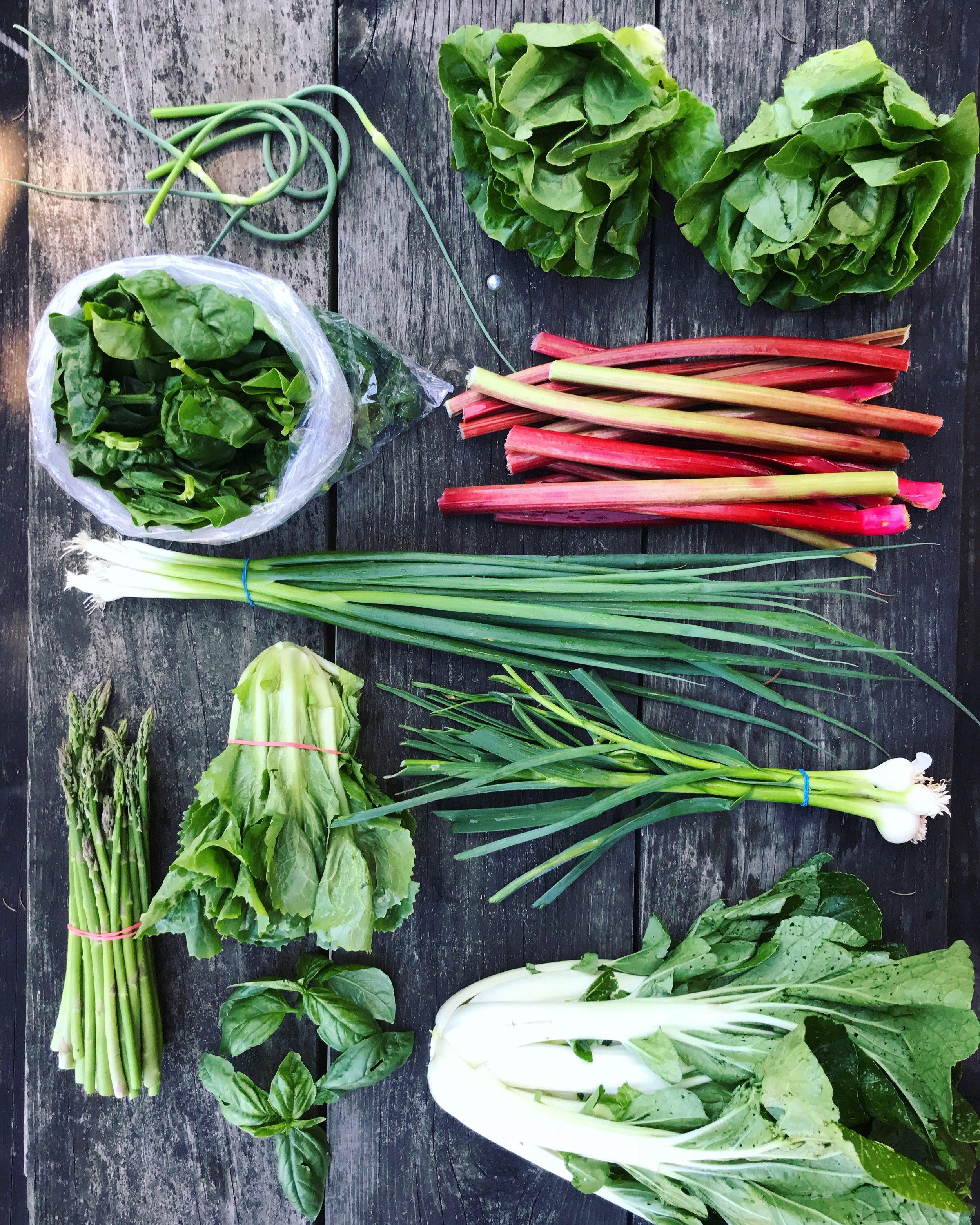 Full share box + lacinato kale!