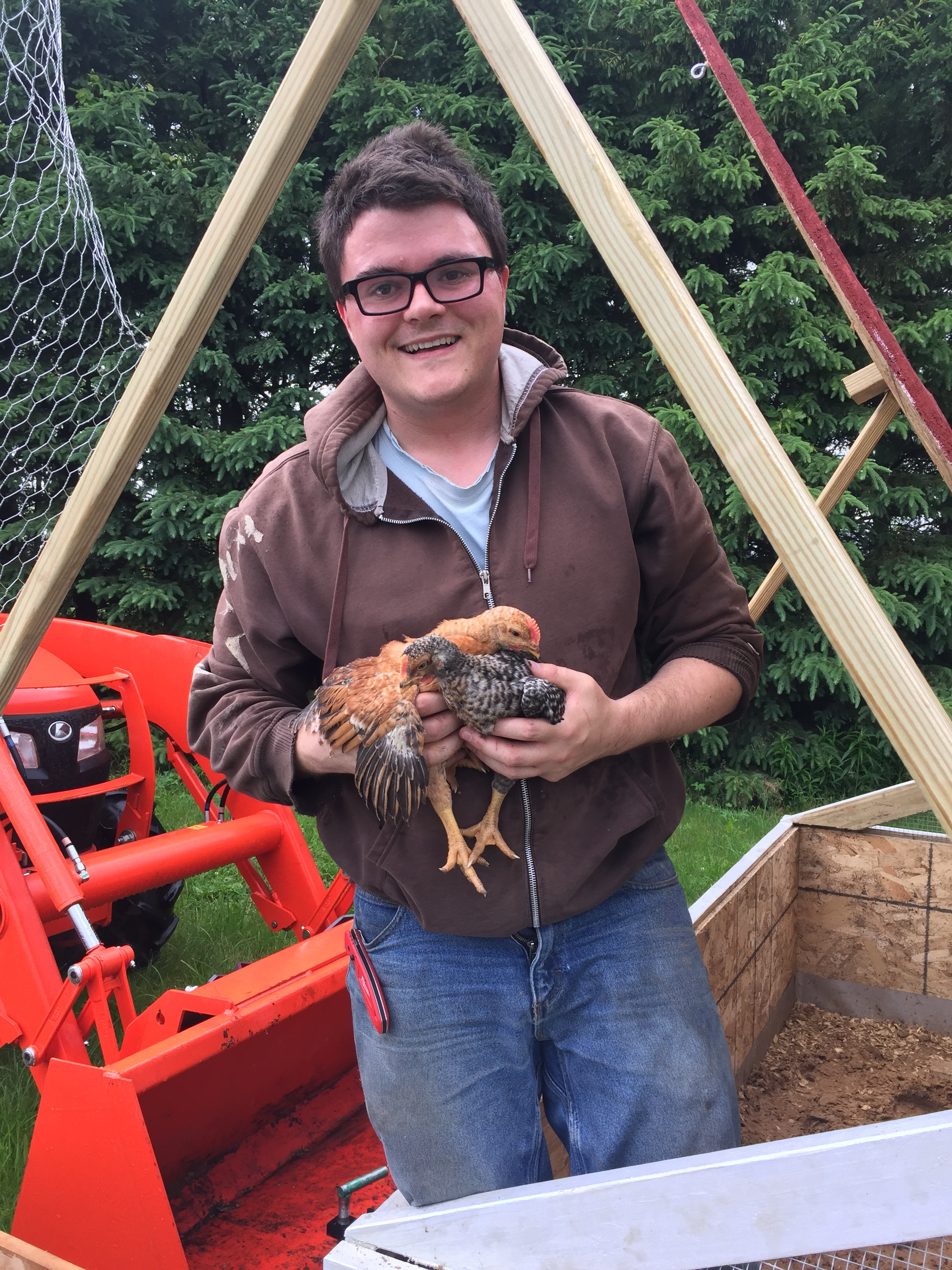 small folk farm chickens - We are thrilled to be partnering with Dave at all of our 2019 drop sites to offer his beautiful fresh birds to the Madison, Evansville, Stoughton and Belleville area on a monthly basis (with deliveries in June, July, August and September).Please note that these birds are NOT certified organic and we are therefore not able to sell them directly through our own website or our CSA. Your purchase of a chicken CSA will be independent of our farm. Your order will be managed by Farmer Dave and coordinated using Raleigh's Hillside Farm drop sites