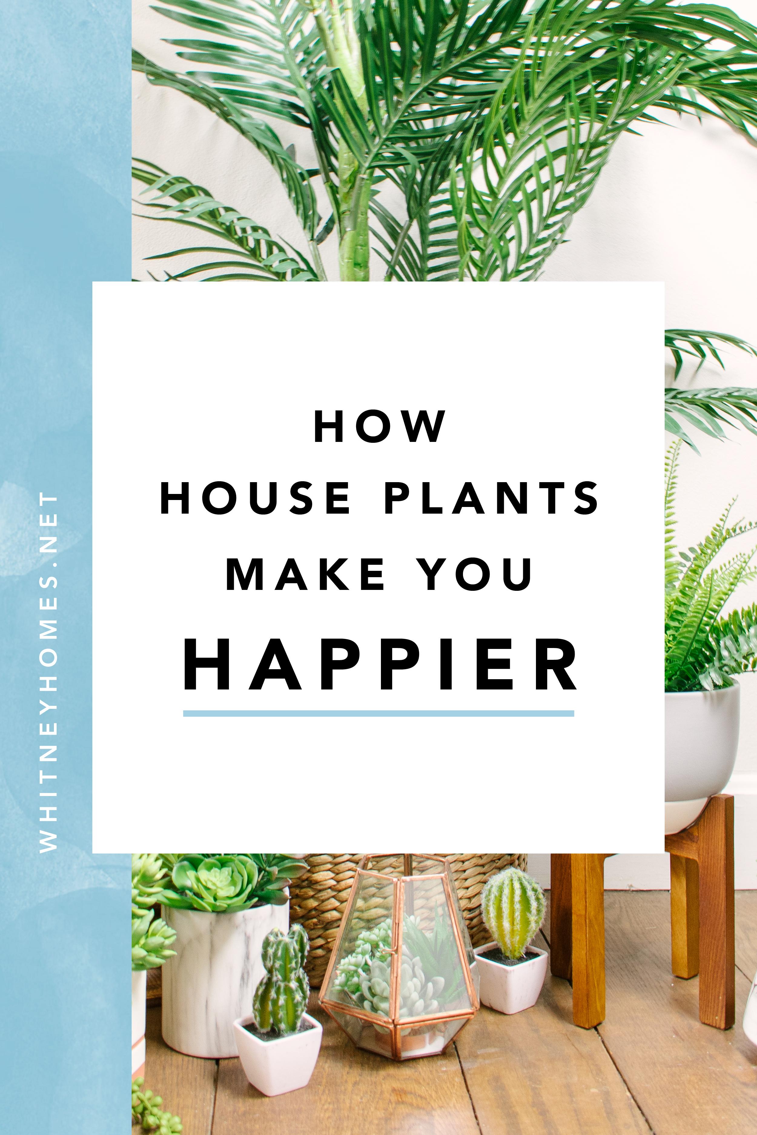 WH_Plants-Happy11.jpg