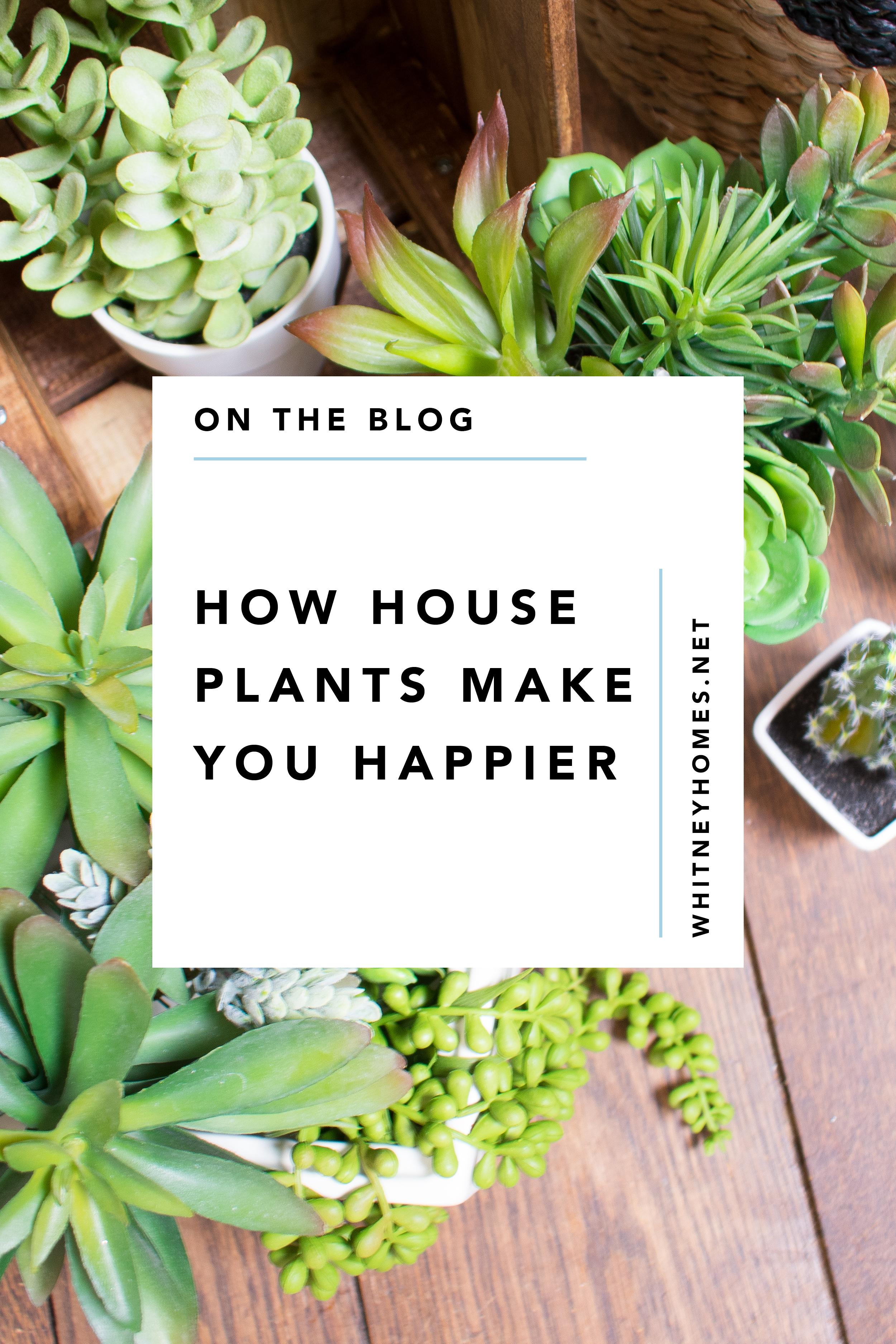 WH_Plants-Happy12.jpg