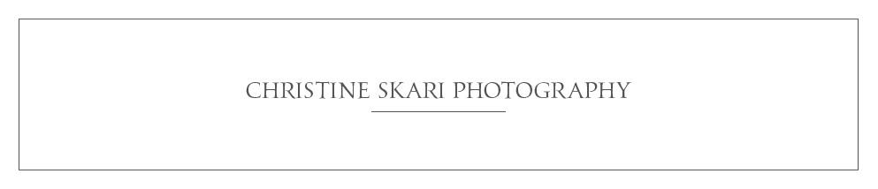 star_hansen_gallery_banner_CHRISTINE_SKARI.jpg
