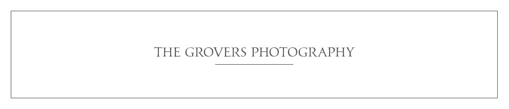 THE_GROVERS.jpg