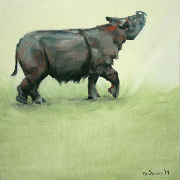 Rhinos - Rhino paintings, not part of the Rhinotopia®series, by Sarah Soward.