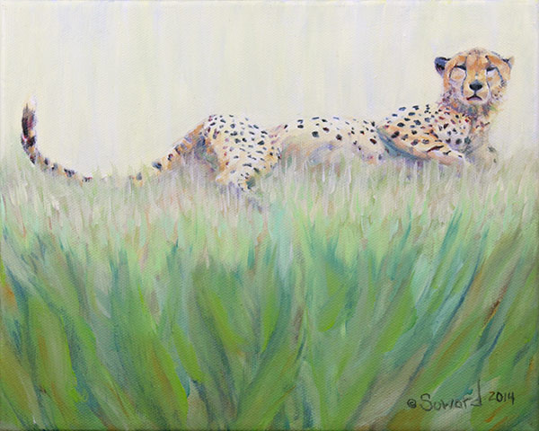Cheetah in the Grass  copyright Sarah Soward.