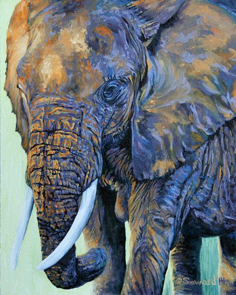 Amboseli Sunset copyright Sarah Soward.