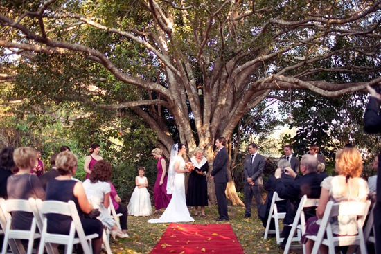 Ceremony under the Grand Fig