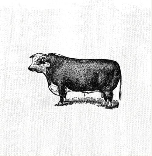 Illustration by  Stefan Weidauer  (Canada).