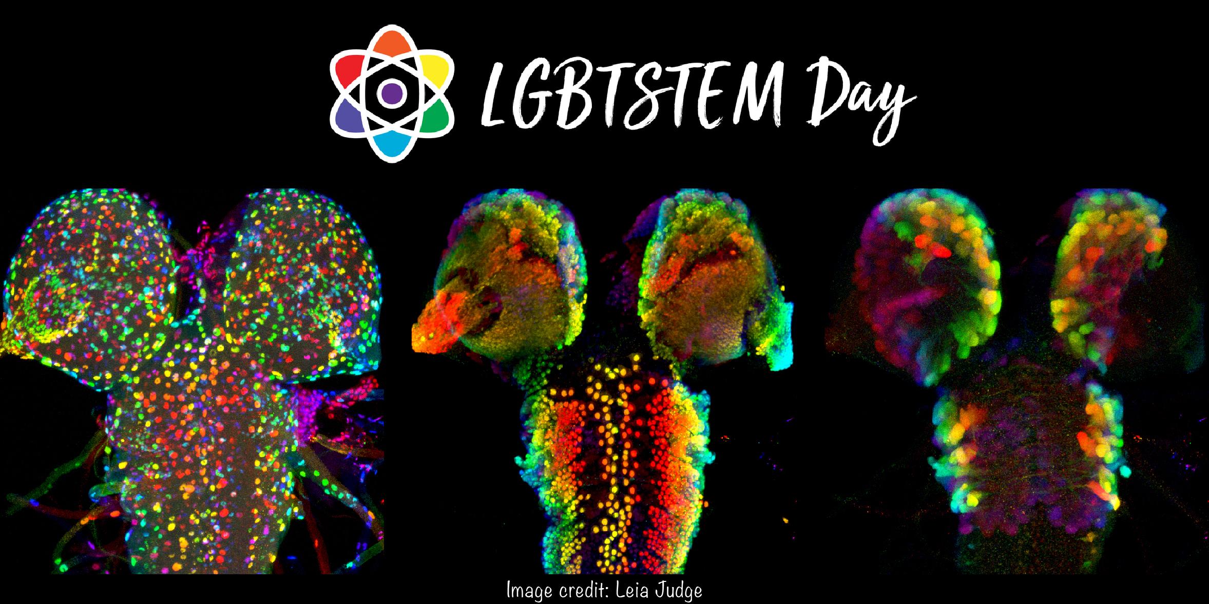 2019.07.05_LGBT STEM.jpg