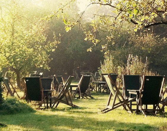 tea garden.jpg