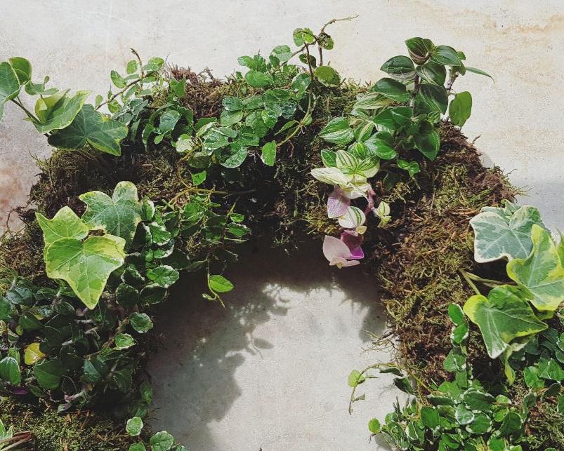 plantedwreath -