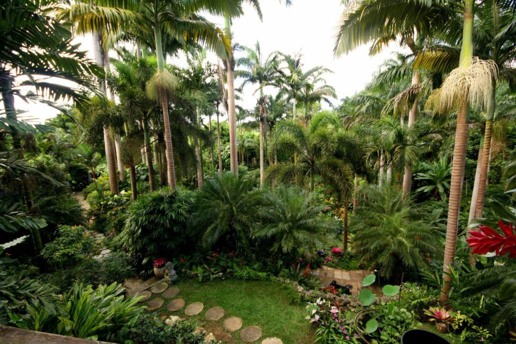 Hunte's Gardens is a fantastic nature spot run by a lovely Barbadian named Anthony Hunte. It's not far from Bathsheba.  JIM BYERS PHOTO