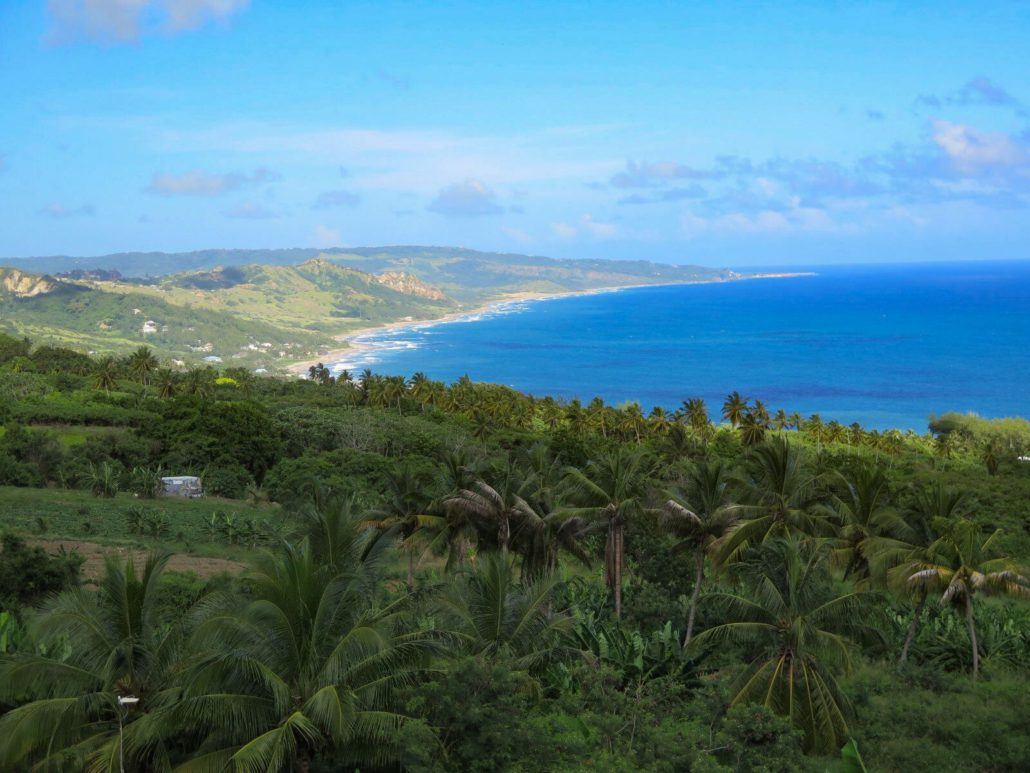 You'll find marvellous views of the quiet east coast of Barbados from the hills above Bathsheba. JIM BYERS PHOTO