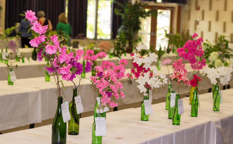 Beverley Hills Garden Club on winning garden club flower designs, standard flower show table designs, garden club underwater designs,