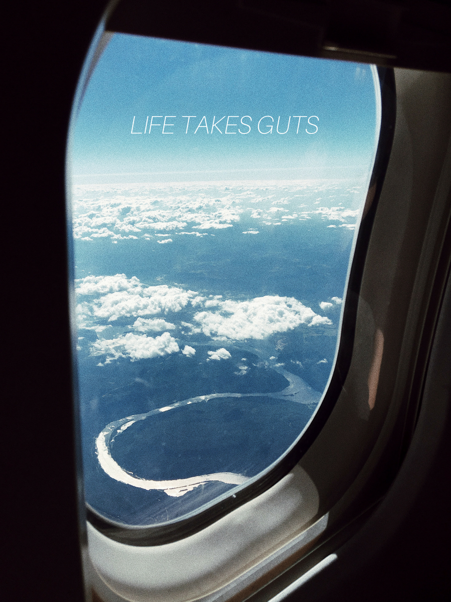 life-takes-guts-thesecondmuse-intent-living-happy-positive-life.jpg