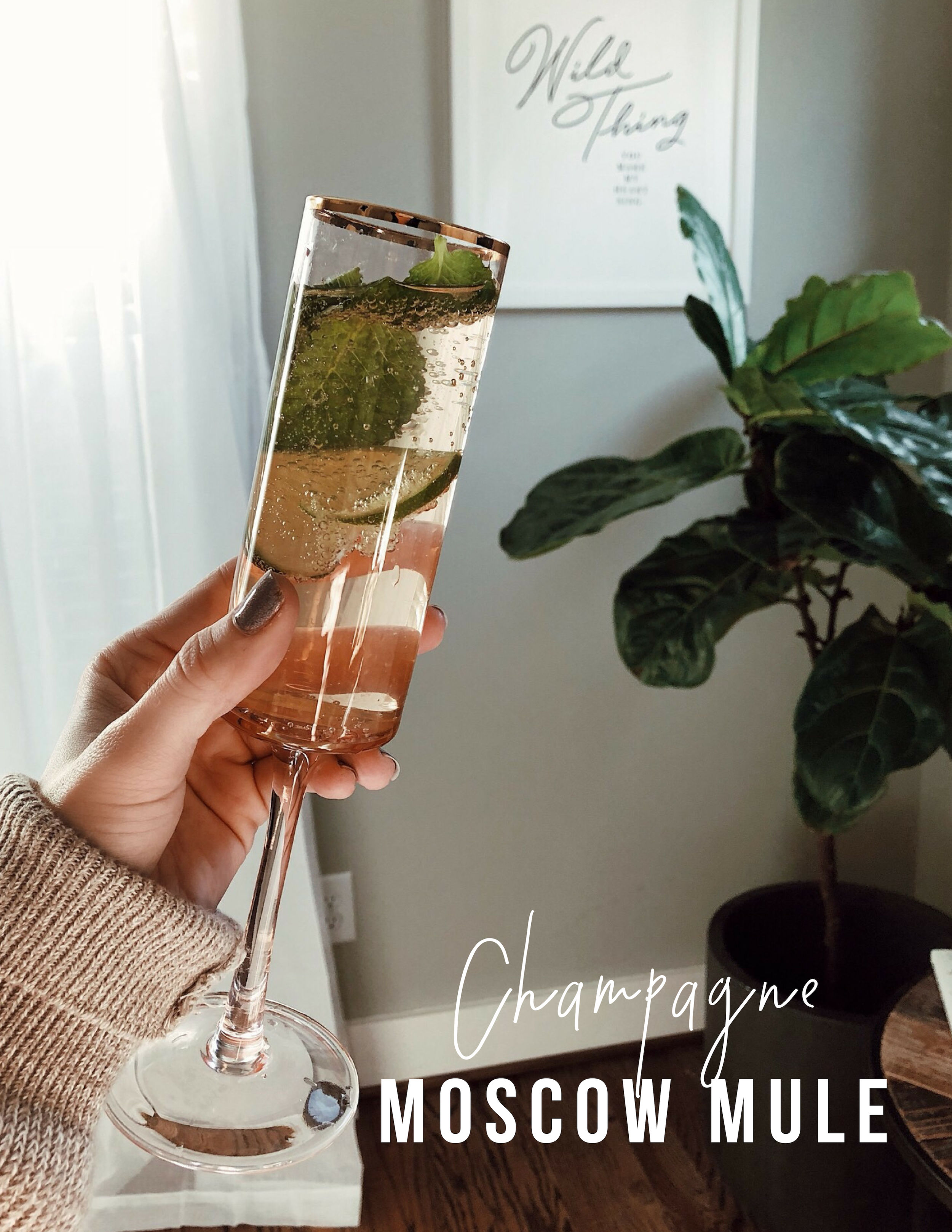 champagne-moscow-mule.jpg