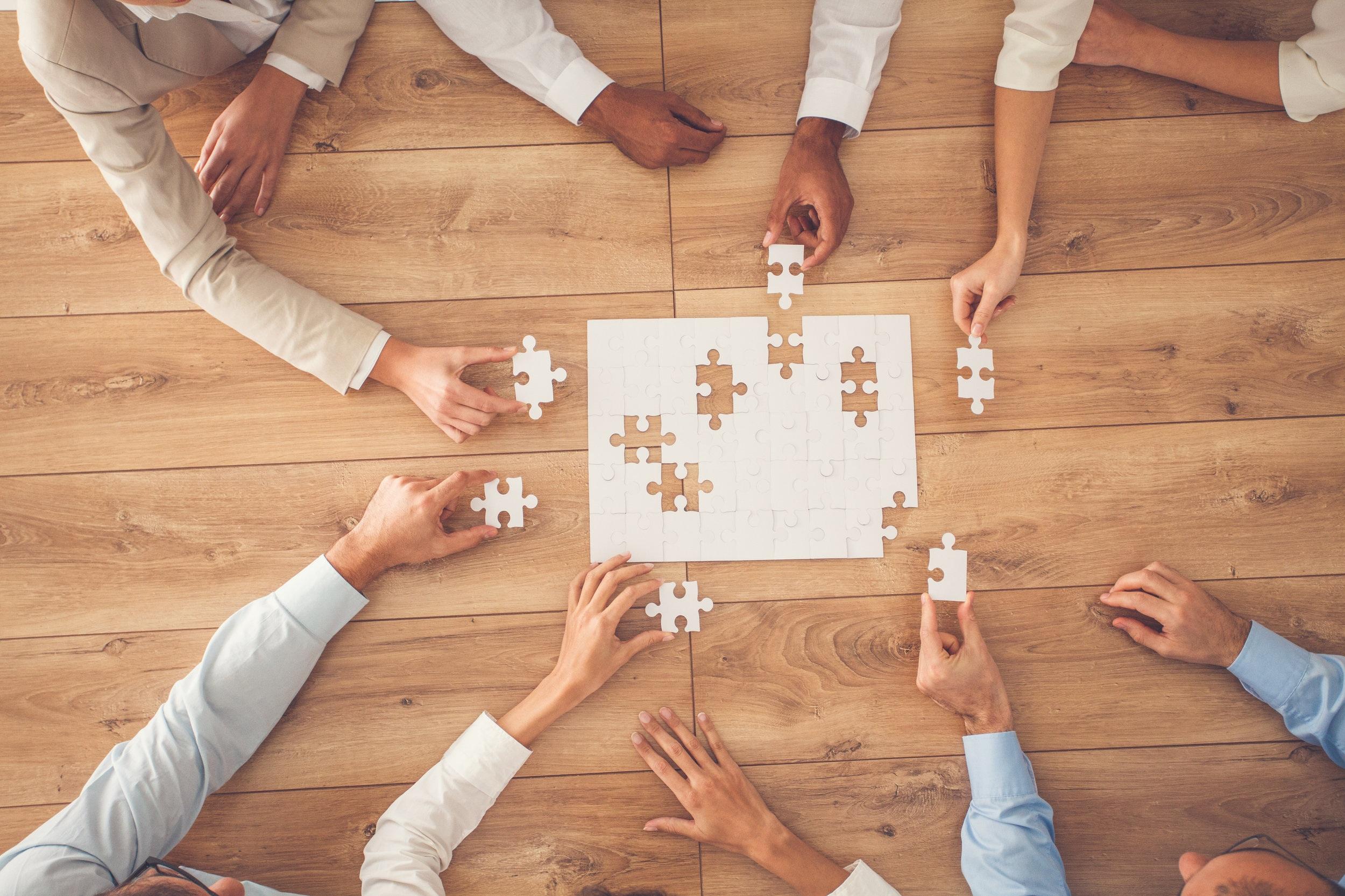 Partners + Collaborators -