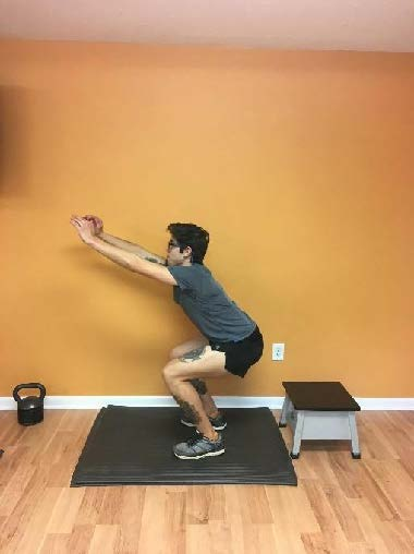 "Double Leg Box Jump  *note: land ""sitting back"" into hips for SOFT landing (trunk will be angled forward). Do not land with body vertical and hard through knees. Knees should face forward."