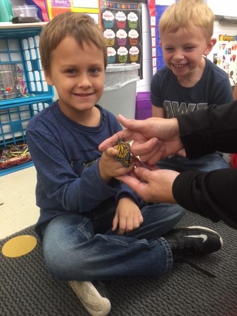 Kindergartenbutterfly