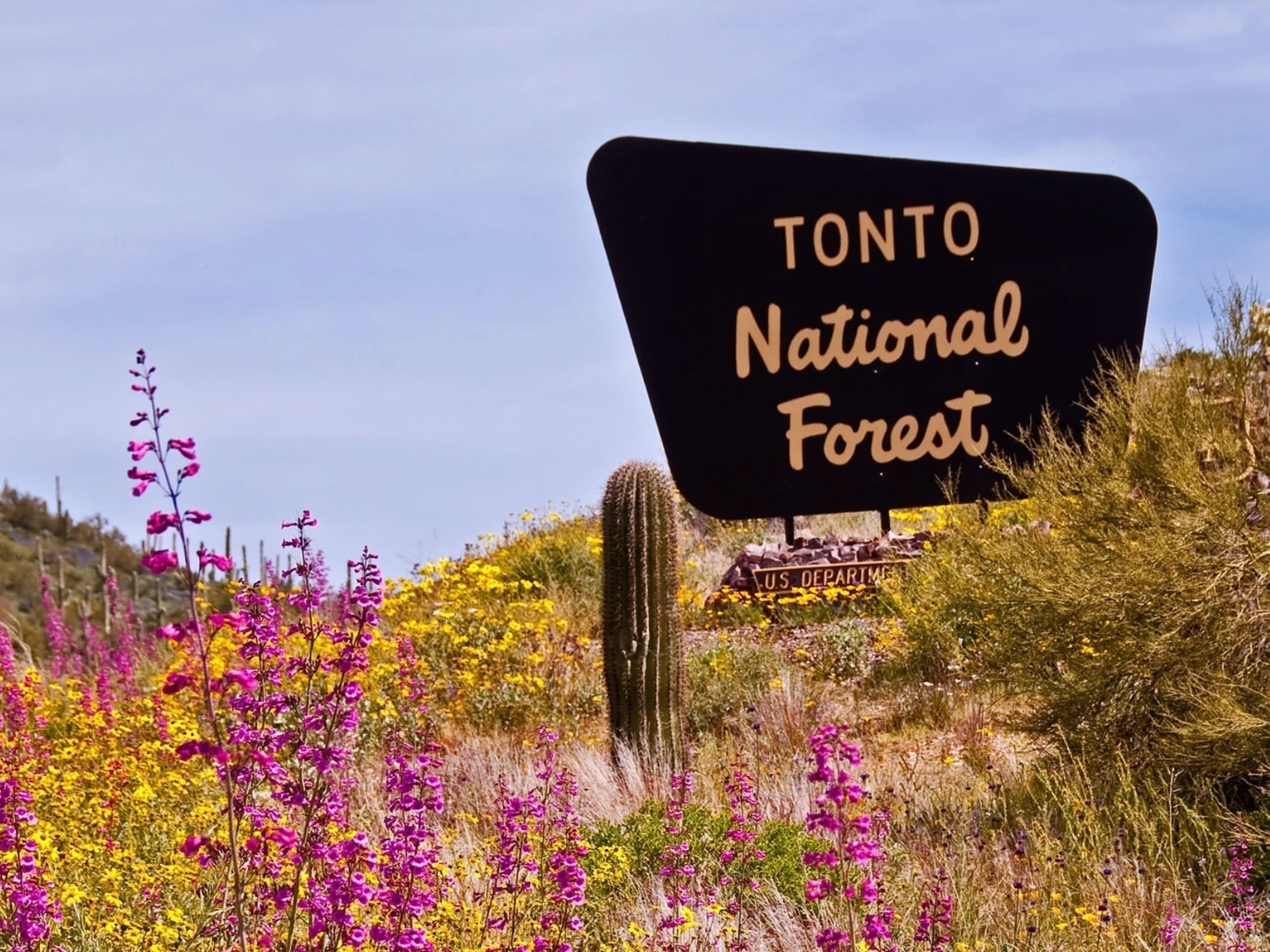 Tonto+National+Forest
