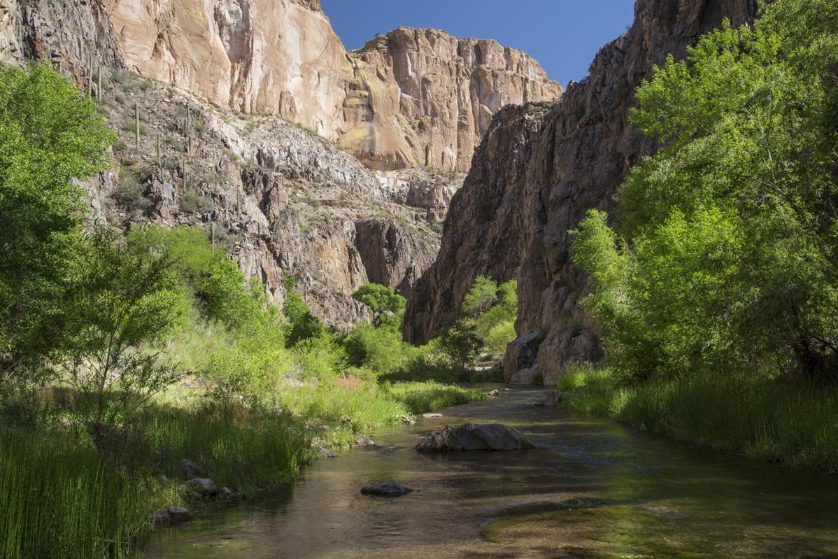 Photo courtesy of  Eastern Arizona Courier .