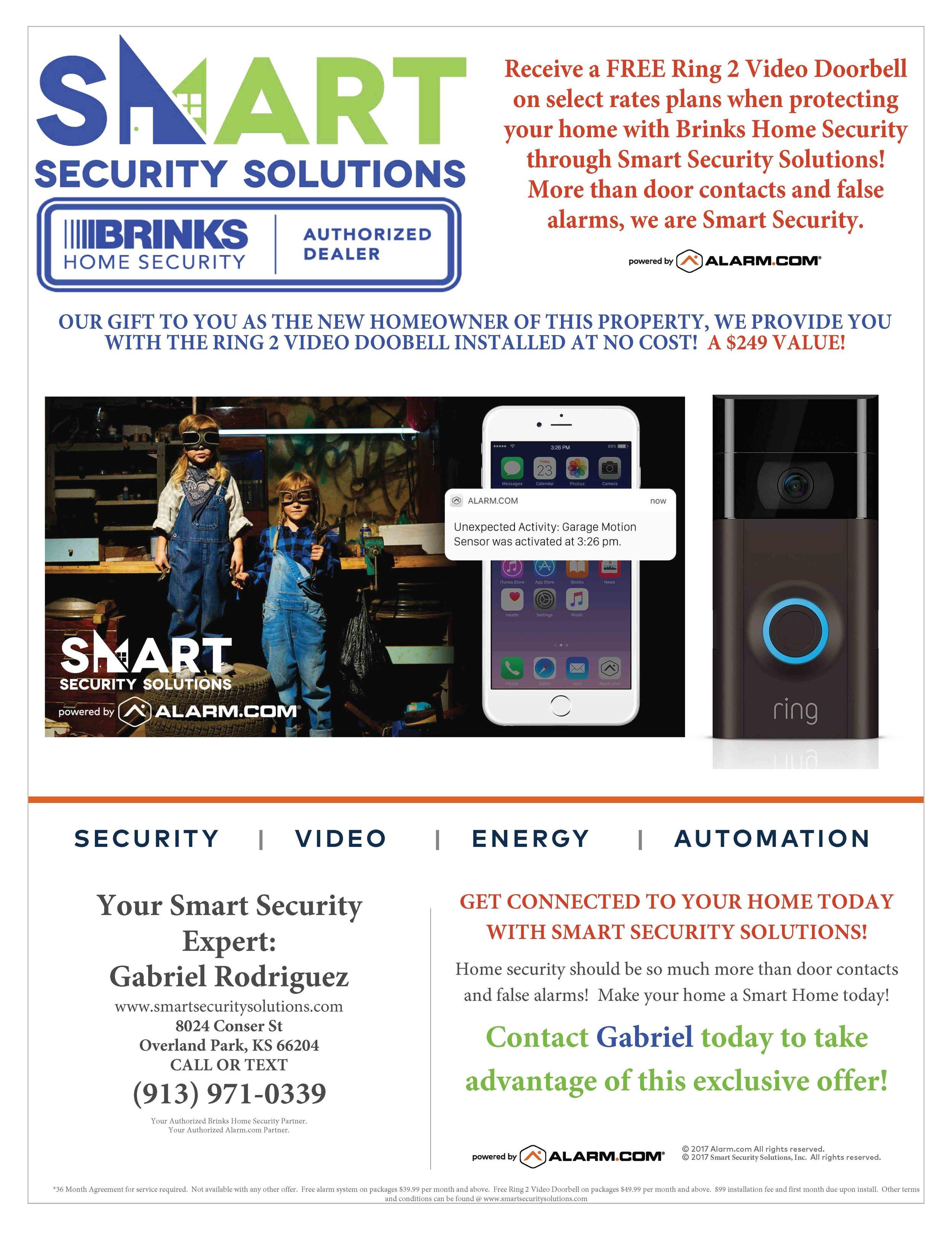 Brinks - Smart Security Flyer - GABE.jpg