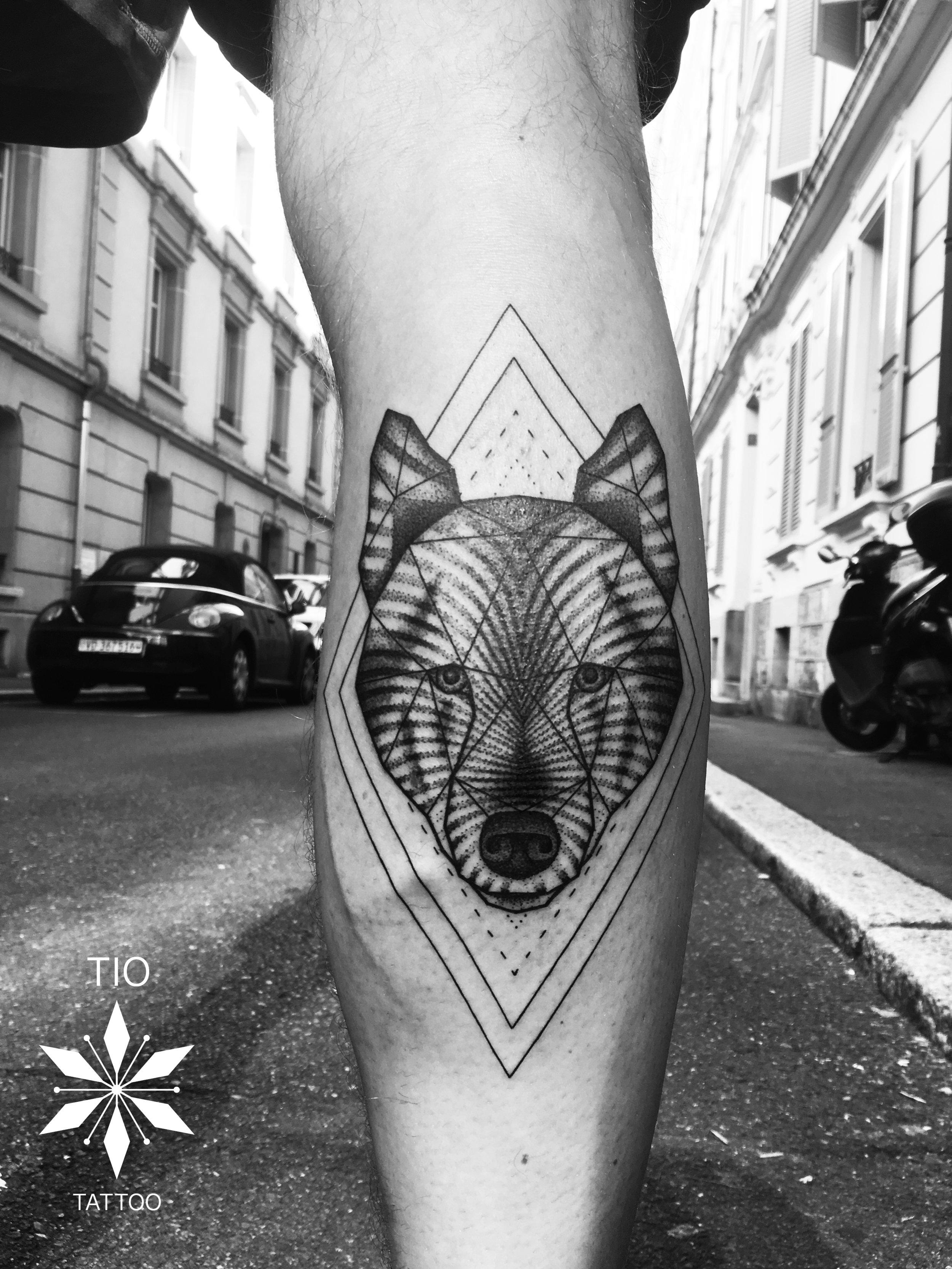 Loup jambe.jpg