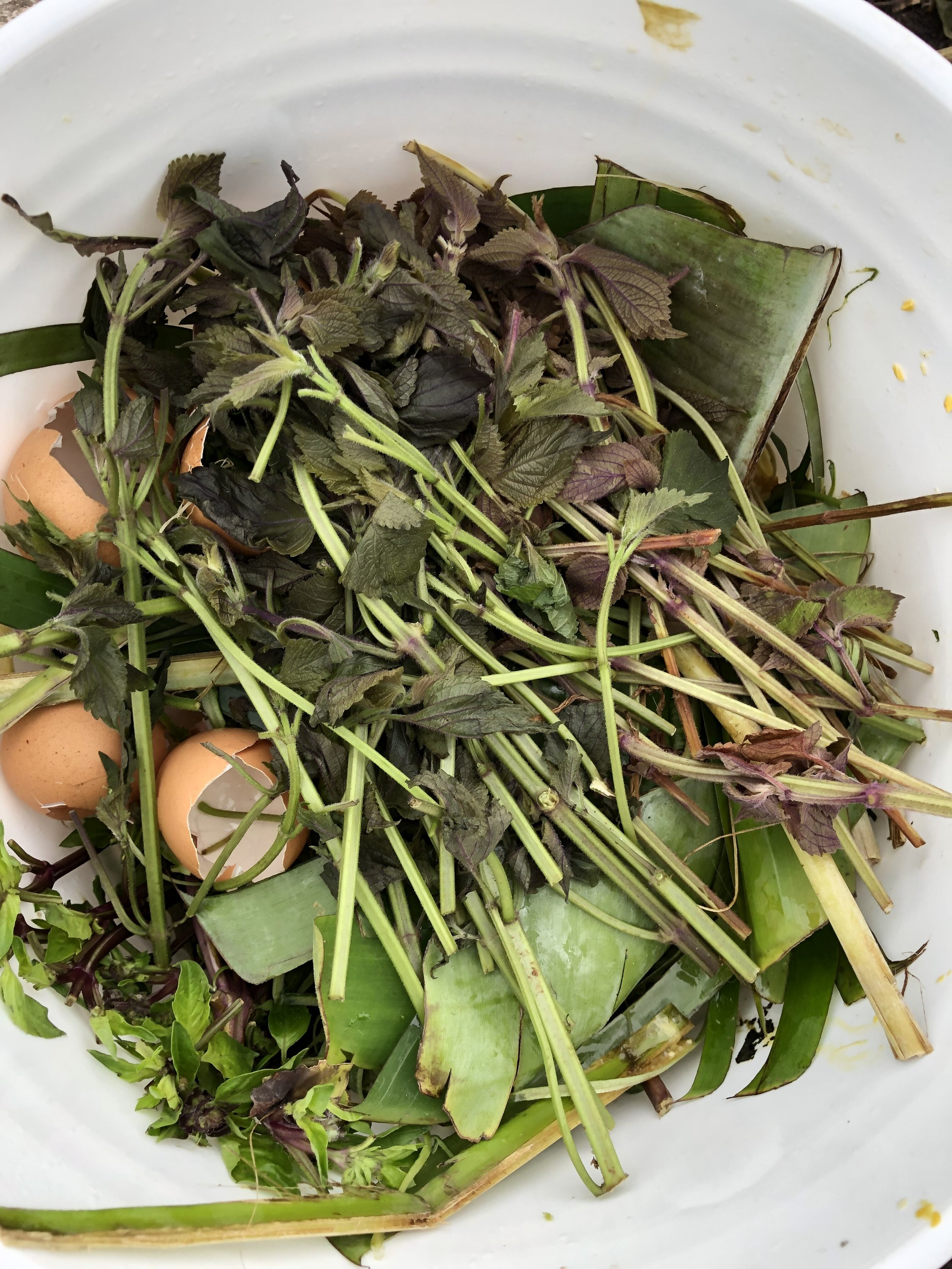 Dallas News - Turn Compost, which specializes in food waste, is also gearing up at the Dallas Farmers Market, where it has a booth. Find out more at turncompost.com.