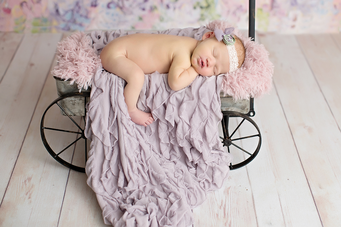 Scarlett (May Newborn 2017)-27 copyw.jpg