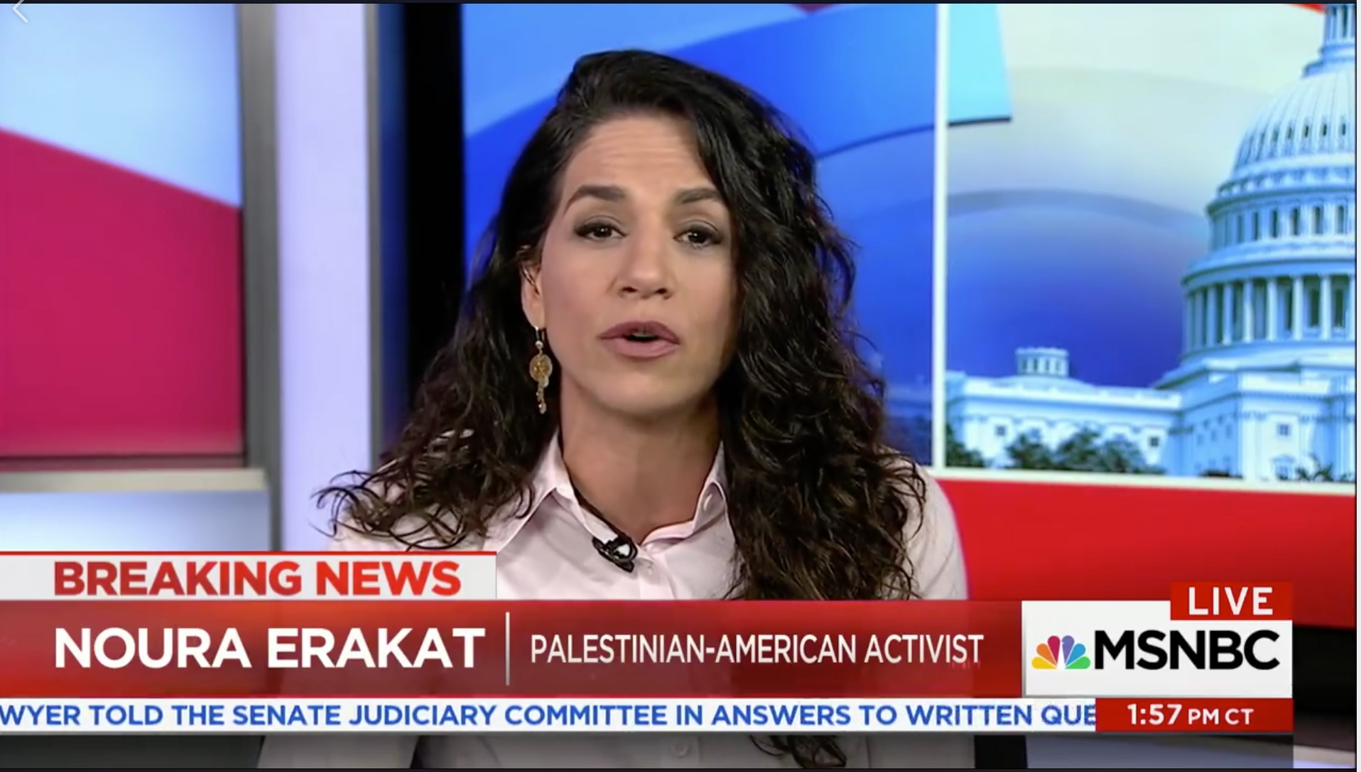 Noura Erakat MSNBC.jpeg