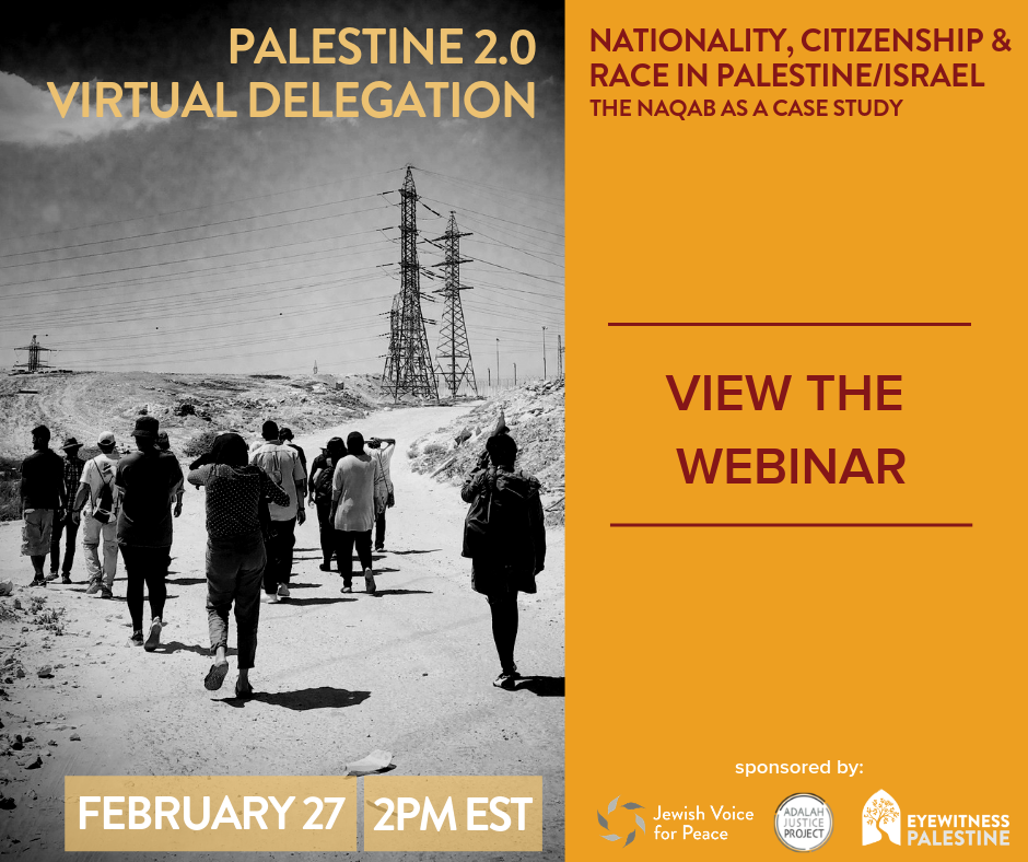 Virtual Delegation Palestine 2.0 Watch the Webinar(2.27.19).png