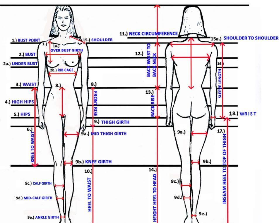 body+measureing.jpg