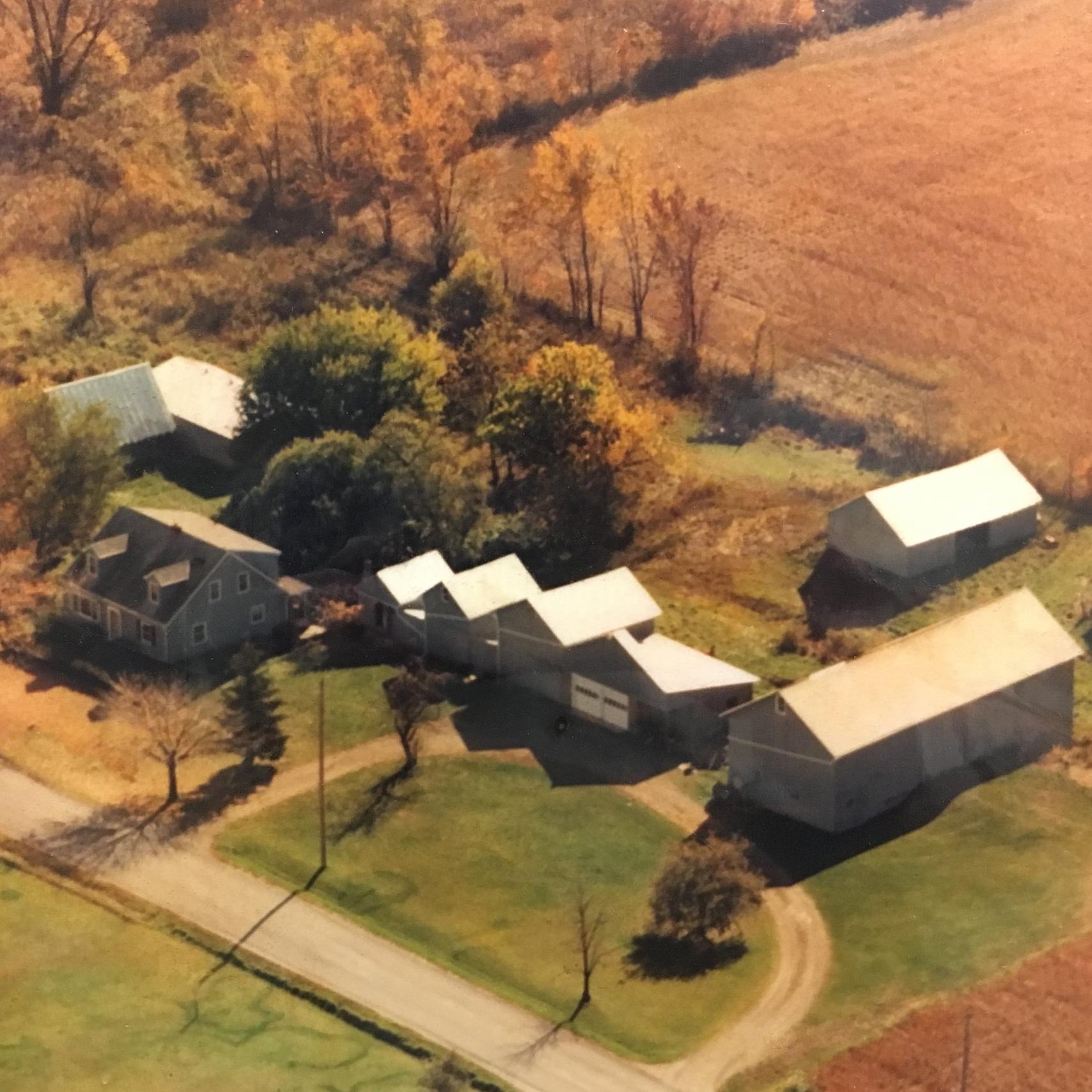 Davis Tree Farm and Nursery - circa 1980