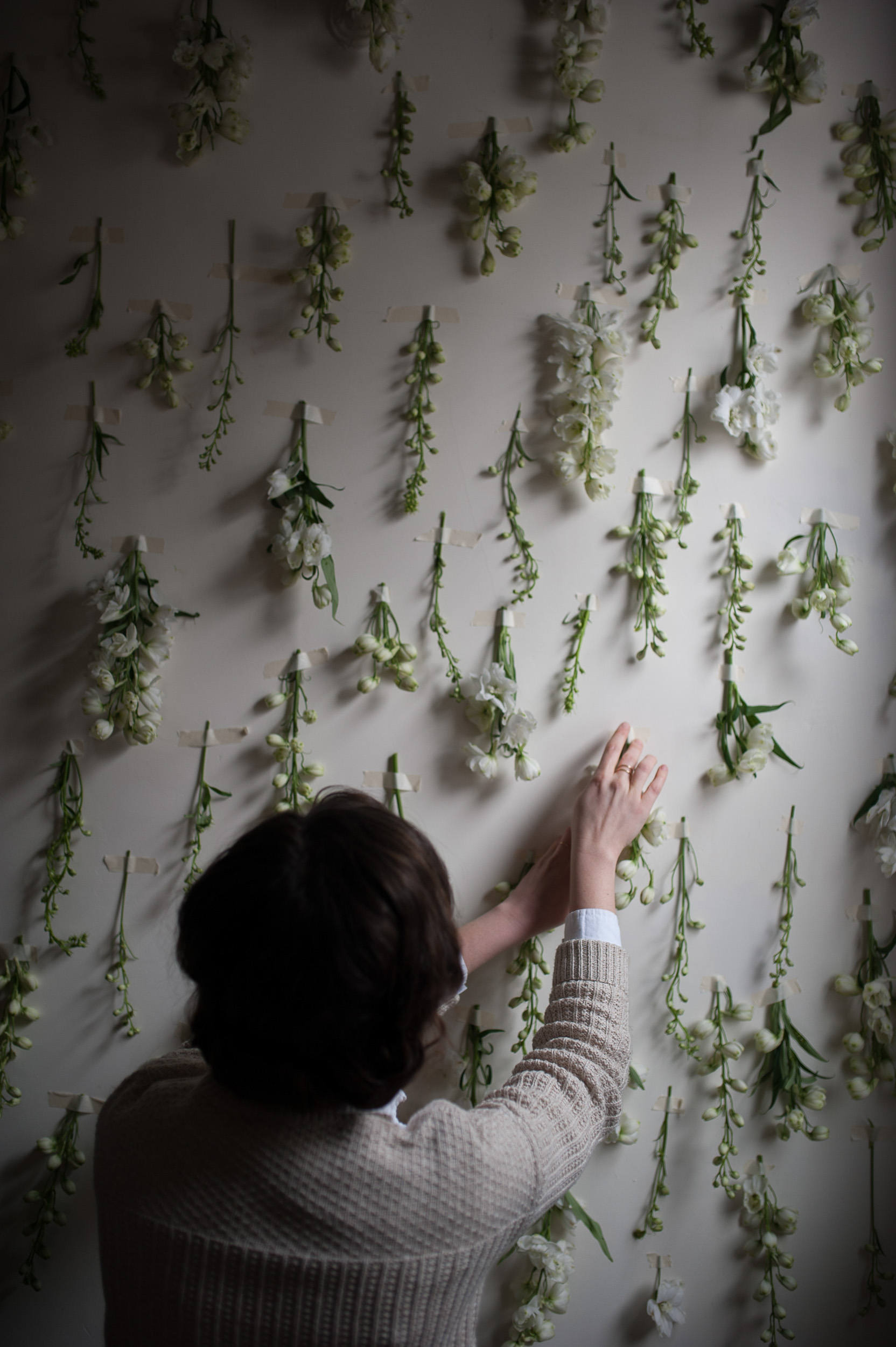 The Forager Magazine -