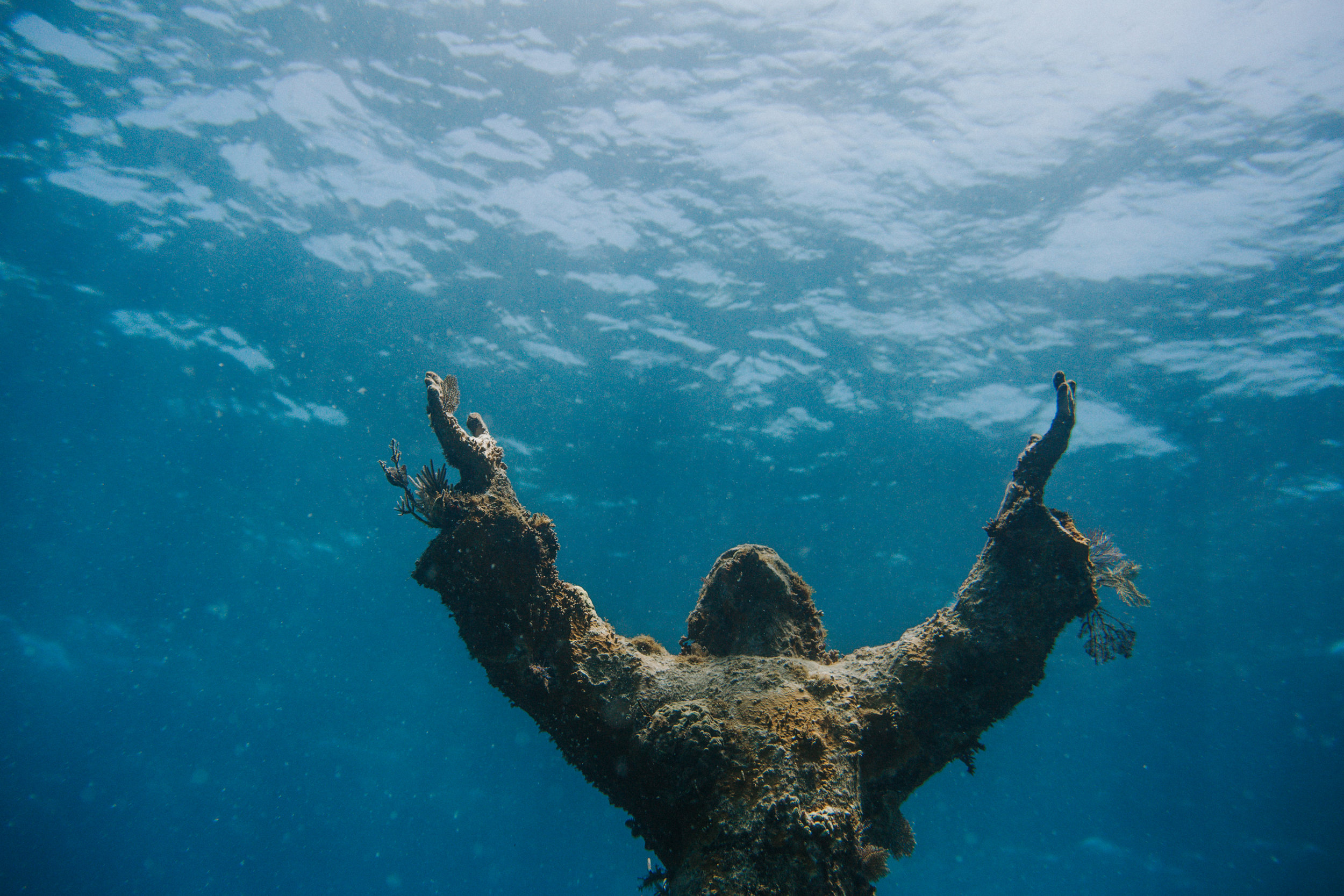 """This sick shot of """"Christ of the Deep"""" was actually taken by Adam!"""