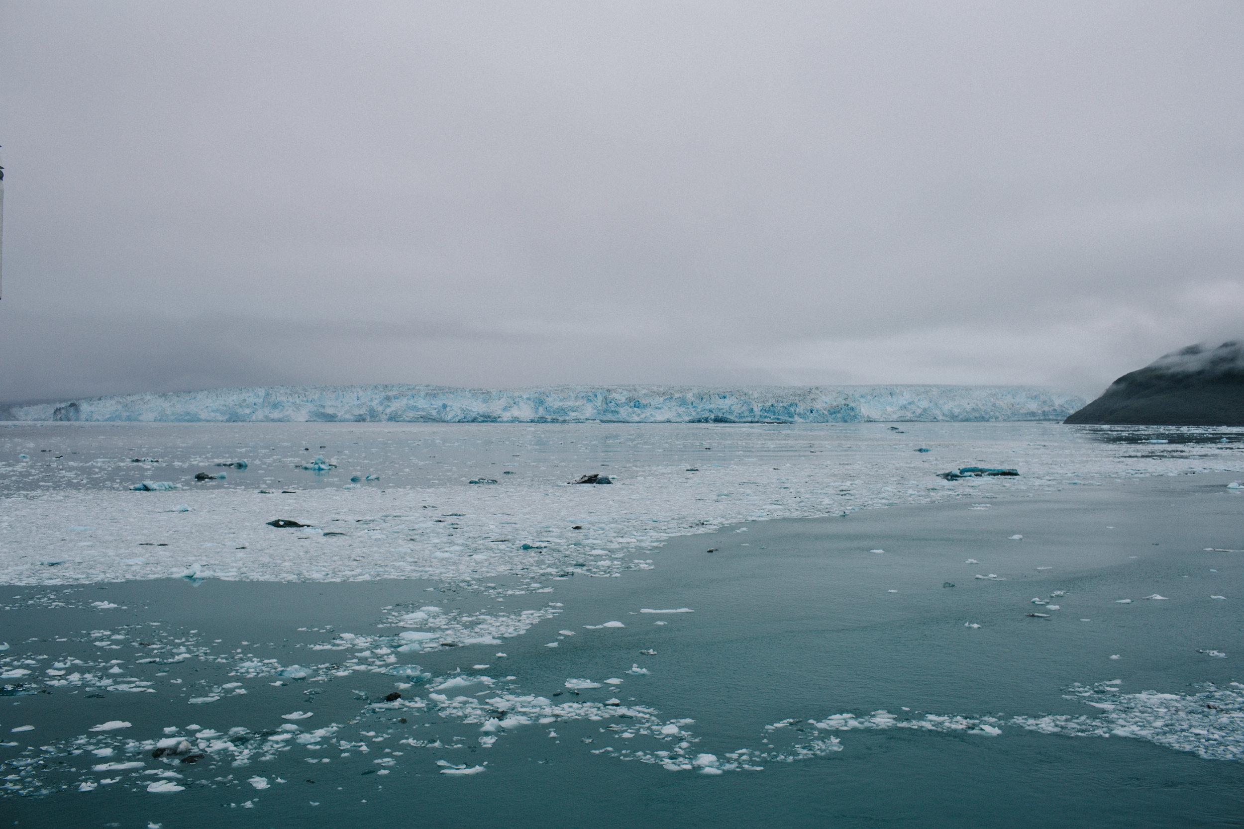 GlacierBayAlaska3_TR2018 (5 of 8).jpg