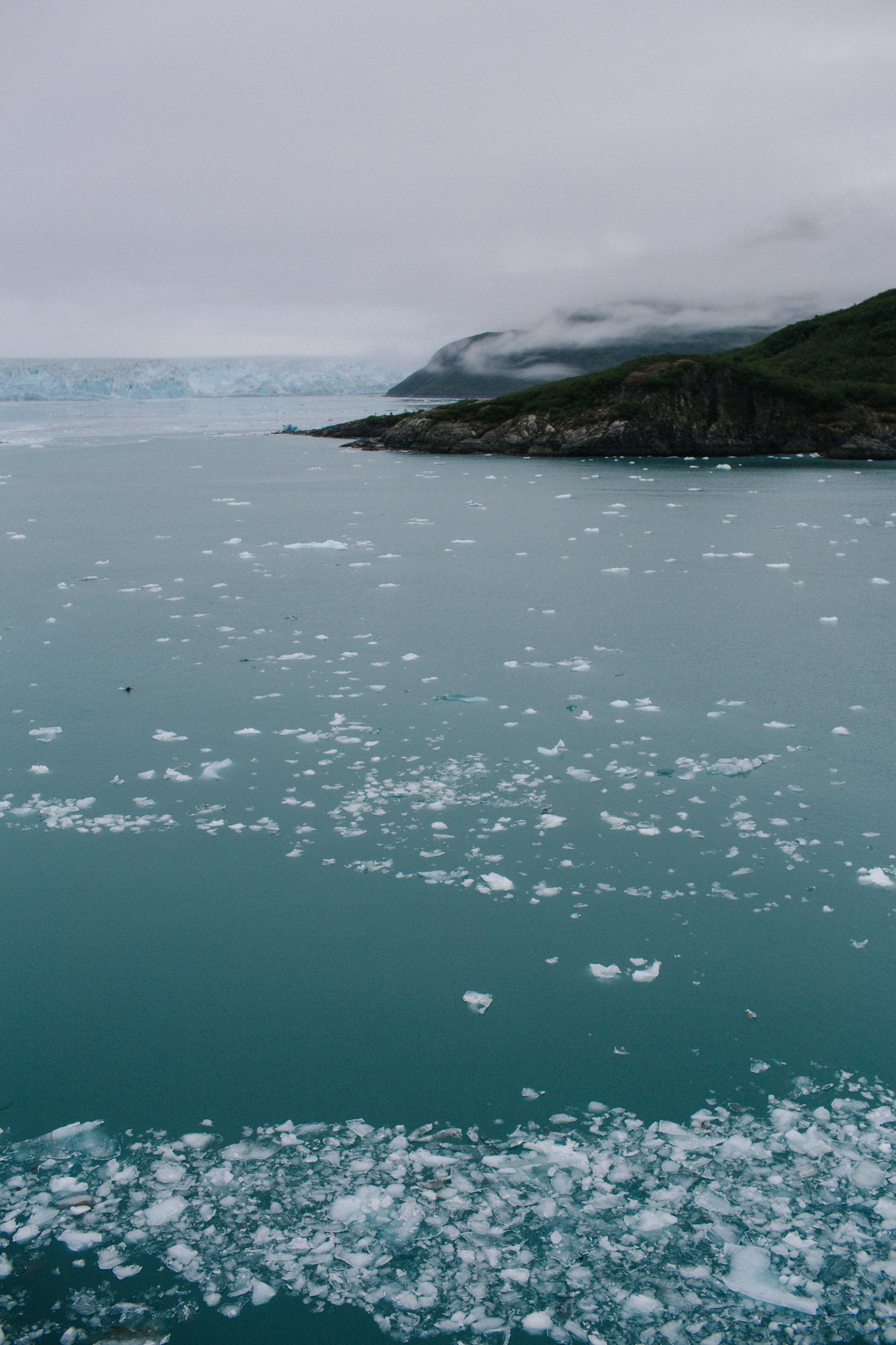 GlacierBayAlaska3_TR2018 (2 of 8).jpg
