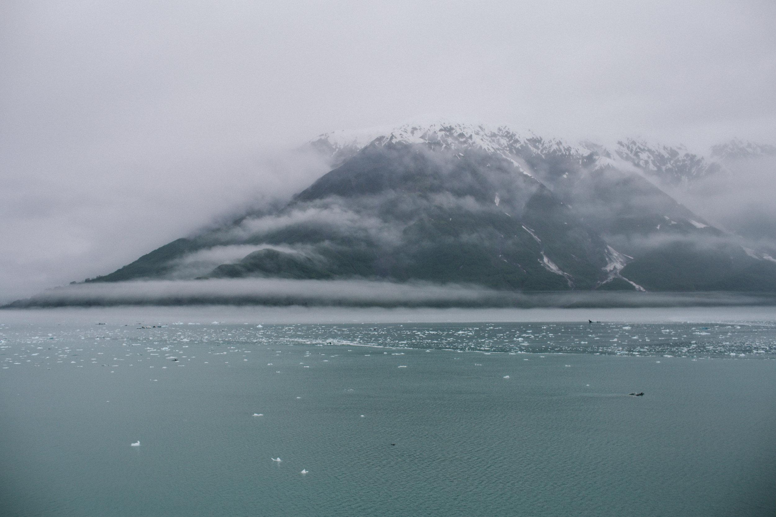 GlacierBayAlaska2_TR2018 (2 of 18).jpg