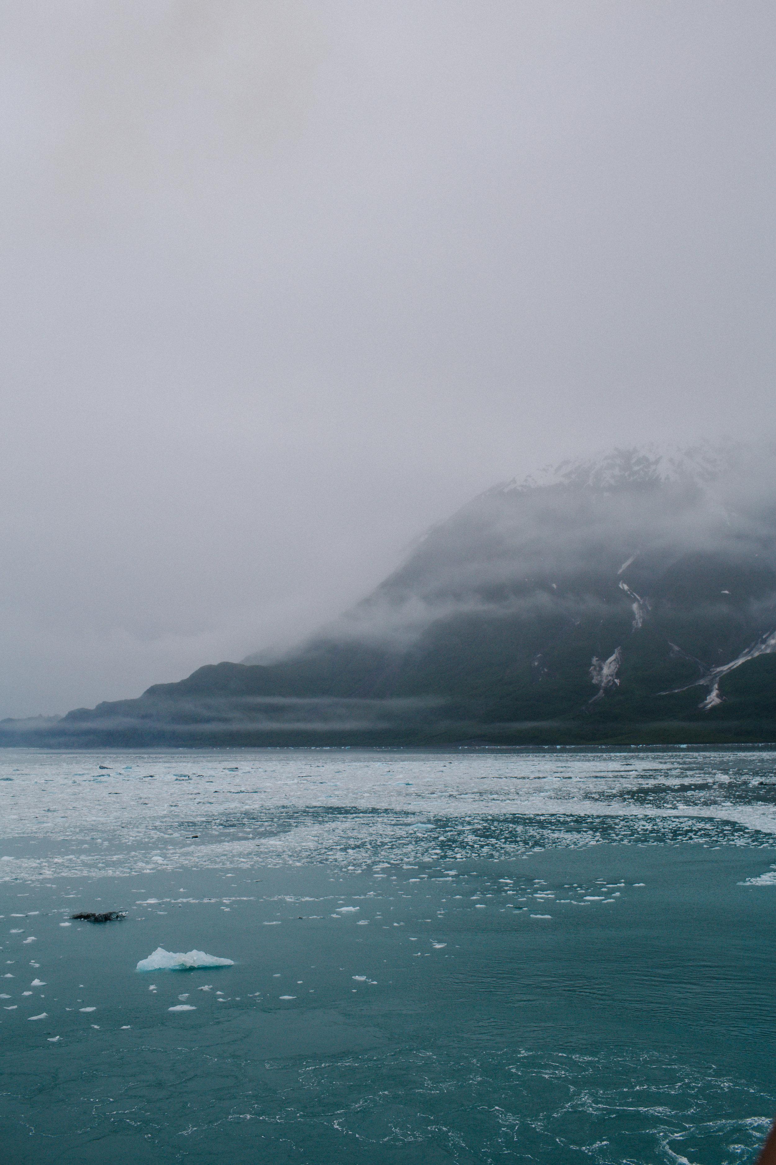 GlacierBayAlaska3_TR2018 (6 of 8).jpg