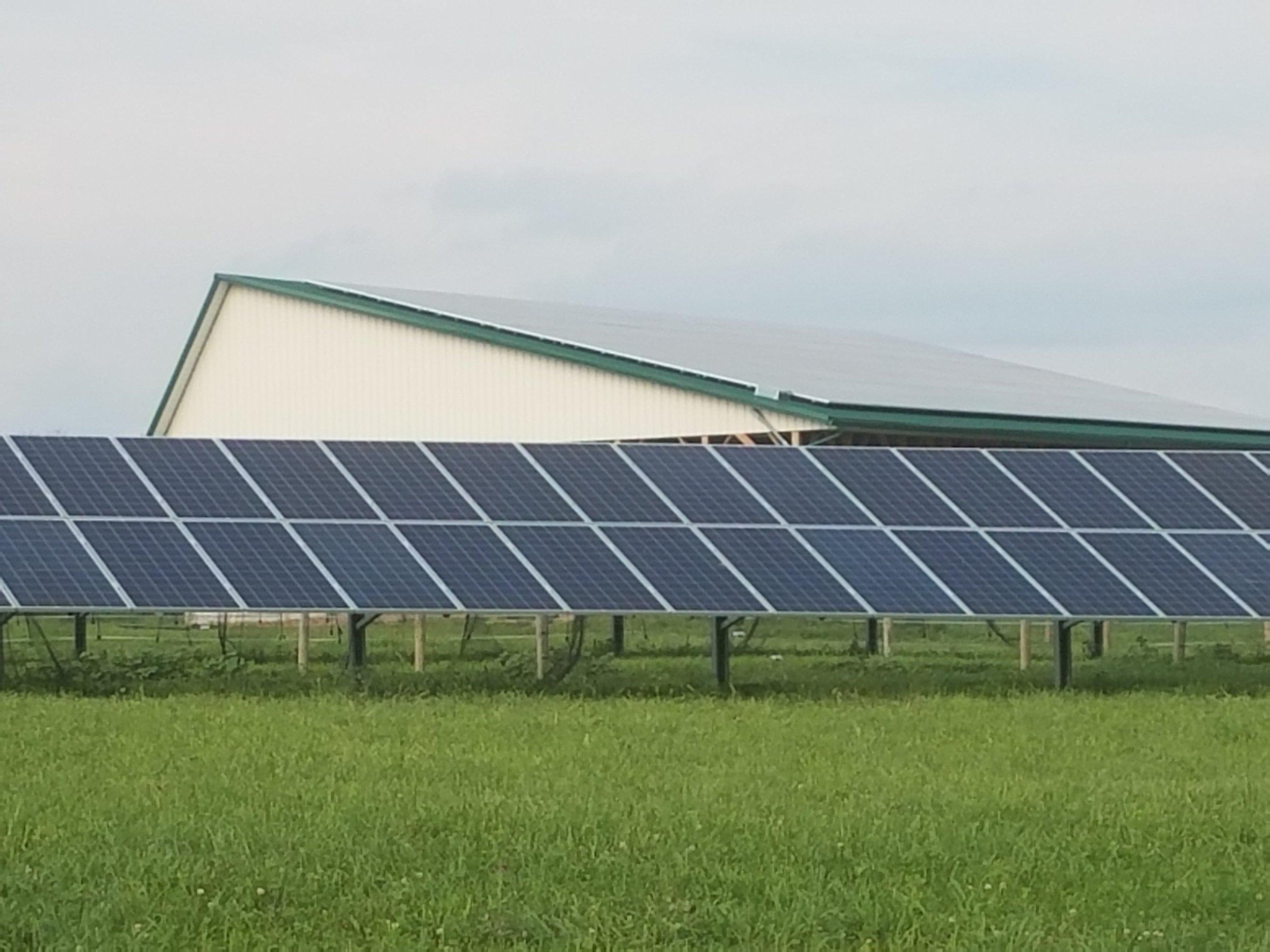 Rock Hill Orchard Solar Array.jpg