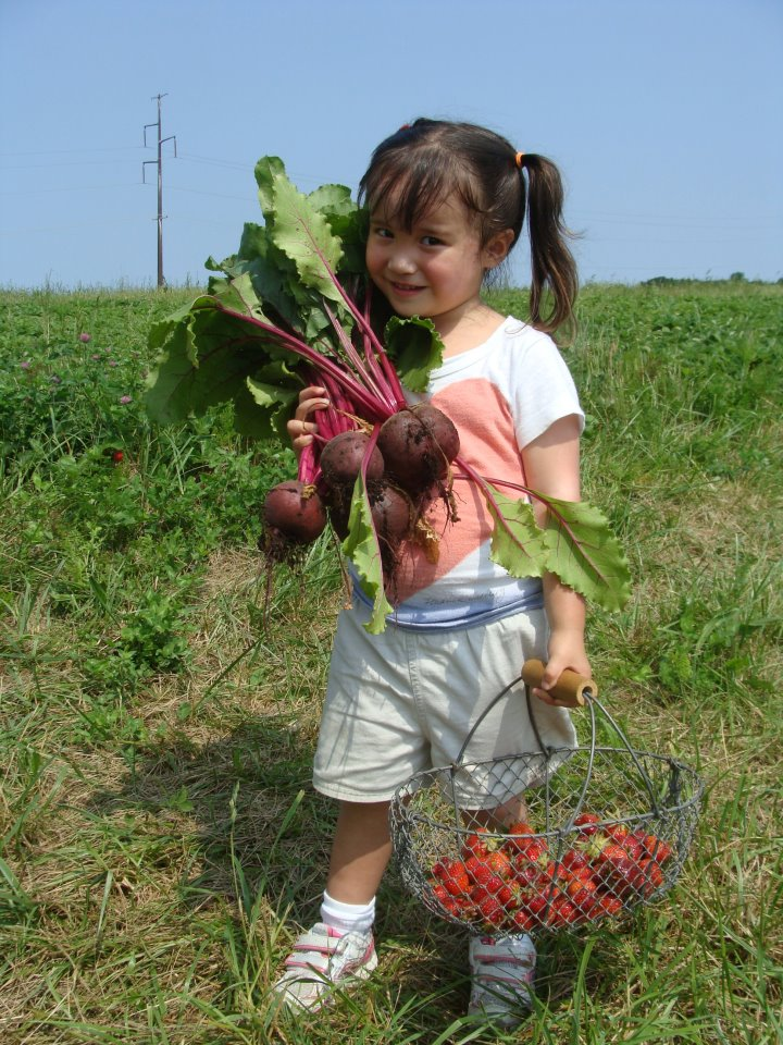 picking beets.jpg